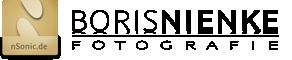 boris-nienke-logo-n2-landscape-h60